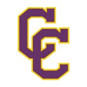 Interlocking CCs Purple